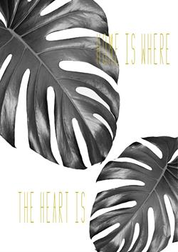 Plakat sort Monstera - Home is where the heart is
